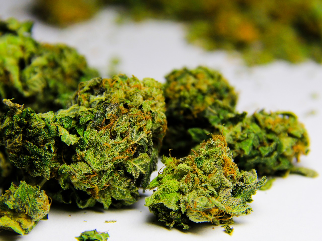 the controversial legalization of marijuana from a medical standpoint