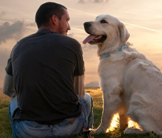 A Gaze Between Dog and Owner Releases Oxytocin - The ...