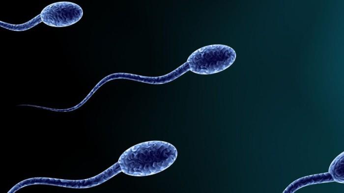 Ate sperm for health