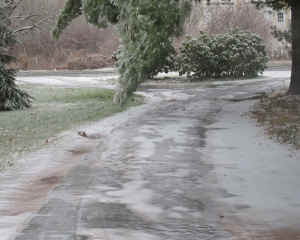 how-to-melt-ice-fast-and-naturally-driveway