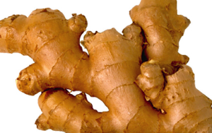 fresh-ginger-medicinal-properties