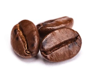 The coffee bean is the main ingredient for coffee, indeed.