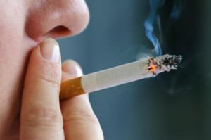 Cigarettes may be the most popular source of nicotine, except for one other...