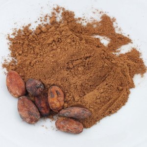 energy-supplements-cacao