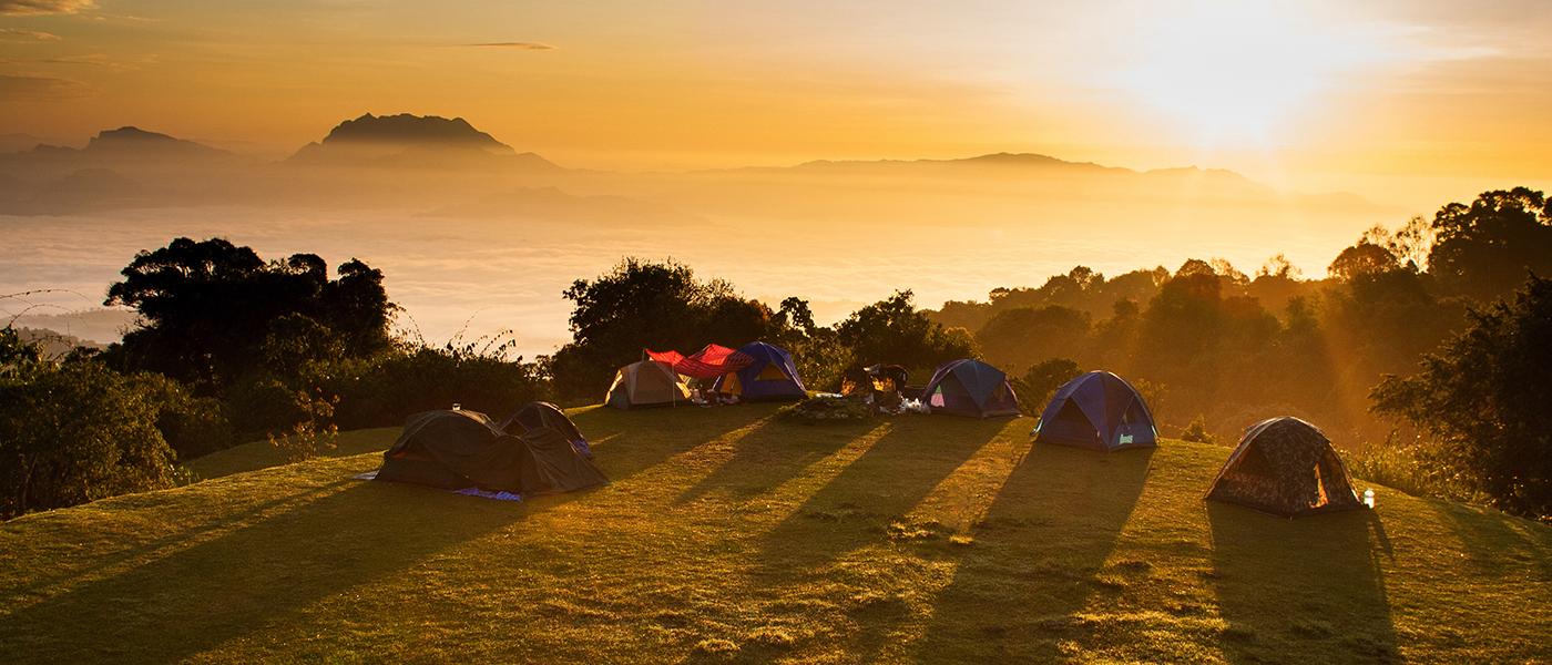 Must Have Camping Accessories - What to Bring on Your Trip ... Camping Forest Wallpaper