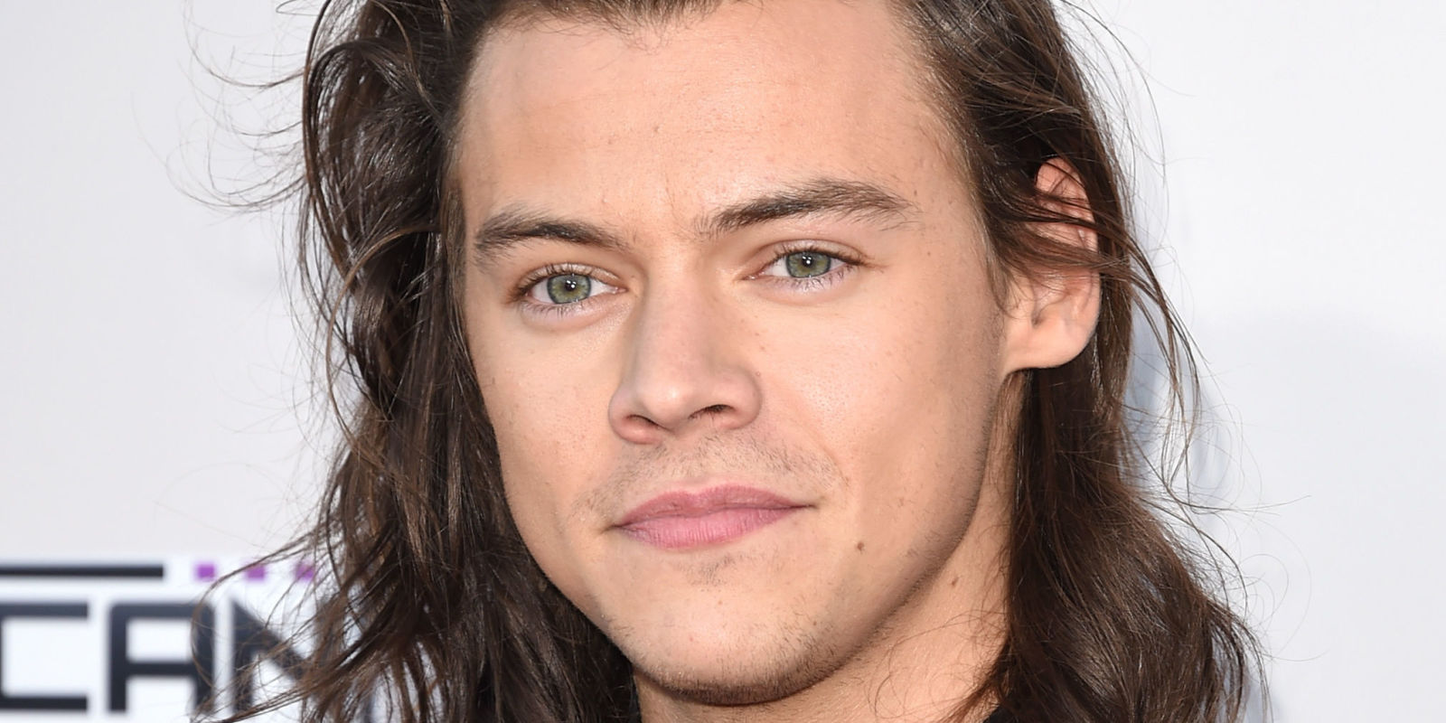 Peachy Harry Styles Net Worth How Rich Is Harry Styles The Gazette Review Short Hairstyles Gunalazisus
