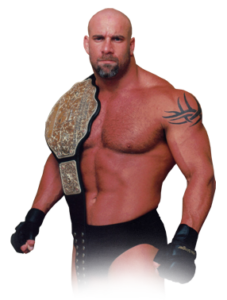 Goldberg could make a return to the WWE since he was involved in the (heavy) advertisement of WWE 2K17