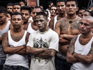 Gang members of Calle 18 and MS-13 often bear many tattoos showing affiliation and their crime record.
