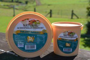 Yogurt with acidophilus