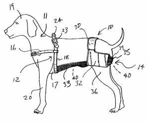 dog-chastity-belt