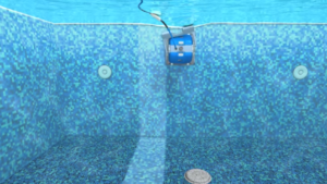 Dolphin Nautilus Pool clenaer on wall