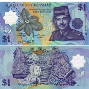 The Brunei Dollar Has Been In Use Since 1967 By Nation Of Burnei As Well Singapore Bill Comes Denominations Similar To That American