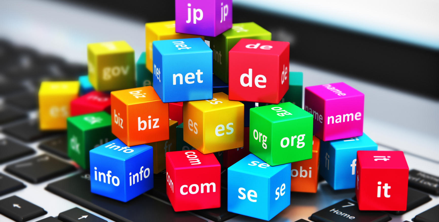 Domain Review Meetings: What to Expect - D155