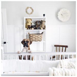 Nacho Cilantro showing off Jillian Harris' nursery for her upcoming child.