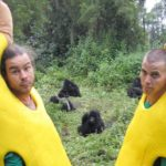 The Wildboyz, dressed as bananas, with some gorillas.
