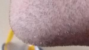 pre-shave-4