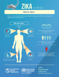 An infographic of Zika symptoms from PAHO and WHO.
