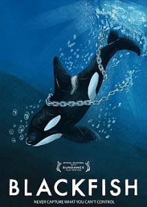 blackfish movie review