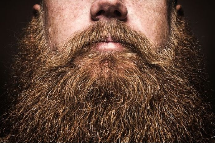 http://gazettereview.com/2017/02/beard-grooming-maintenance-tips/