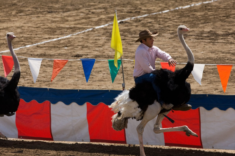 Top 10 Most Unusual Sports in the World