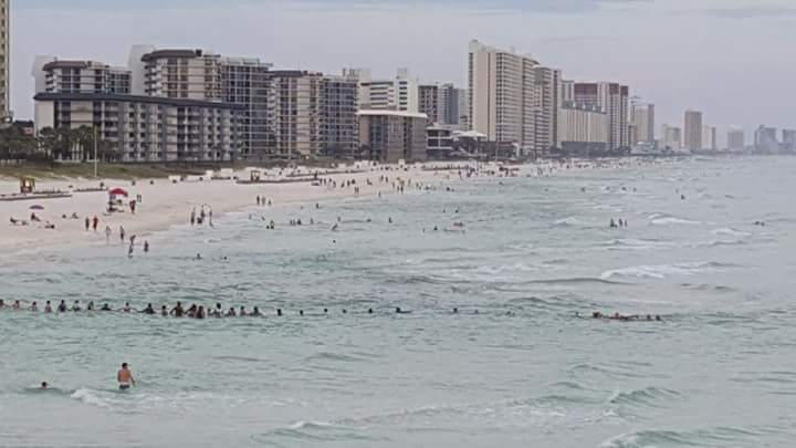 Strangers form human chain to save distressed swimmers at Panama City Beach
