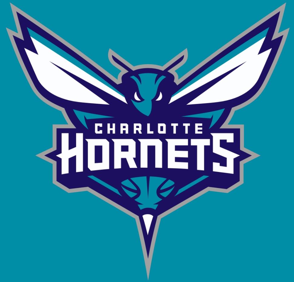 the charlotte hornets