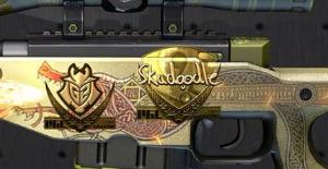 CSGO Skin Skadoodle